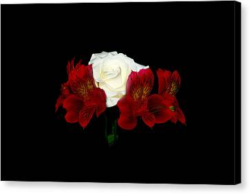 Red And White Canvas Print by Cecil Fuselier