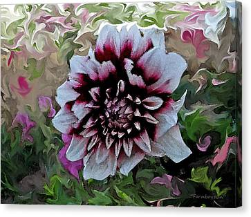 Red And White Dahlia  Canvas Print
