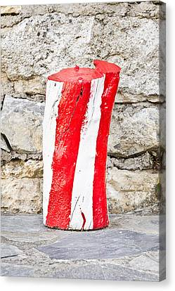 Red And White Log Canvas Print by Tom Gowanlock