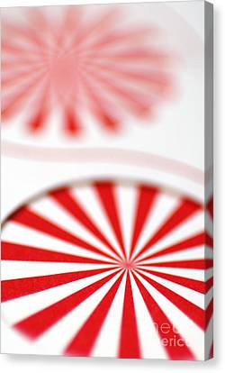 Red And White Pinwheels Canvas Print by Amy Cicconi
