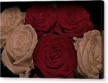 Cabin Wall Canvas Print - Red And White Roses Color Engraved by David Dehner