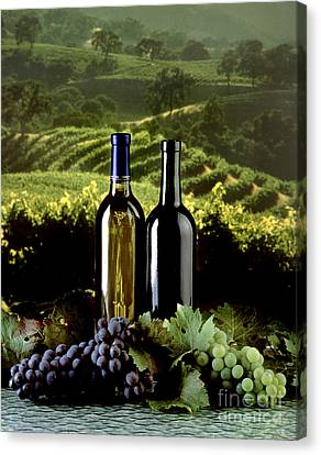 Red And White Wines Canvas Print by Craig Lovell