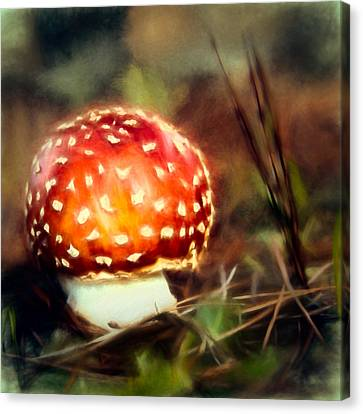 Red And Whitetoadstool Canvas Print by John K Woodruff