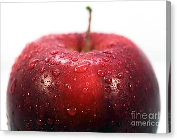 Red Apple Top Canvas Print by John Rizzuto