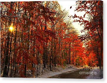 Red Autumn Road In Snow Canvas Print by Terri Gostola
