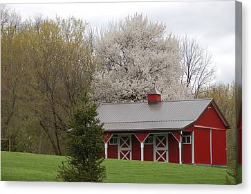 Red Barn Canvas Print by Aimee L Maher Photography and Art Visit ALMGallerydotcom