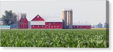 Red Barn And Cornfield  8420 Canvas Print