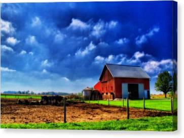 Cow Canvas Print - Red Barn And Cows In Ohio by Dan Sproul