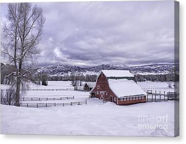 Red Barn At Lamb Ranch Canvas Print