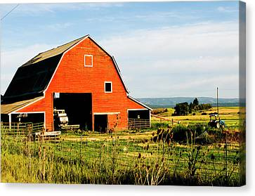 Red Barn In Field Near Joseph, Wallowa Canvas Print by Nik Wheeler