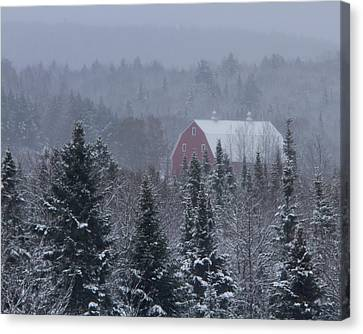 Red Barn In Maine Canvas Print by Jack Zievis
