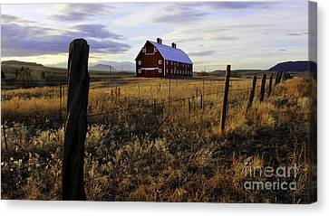 Red Barn In The Golden Field Canvas Print by Kristal Kraft