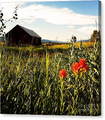 Canvas Print featuring the photograph Red Barn by Meghan at FireBonnet Art