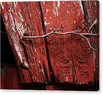 Canvas Print featuring the photograph Red Barn Wood With Dried Vine by Rebecca Sherman
