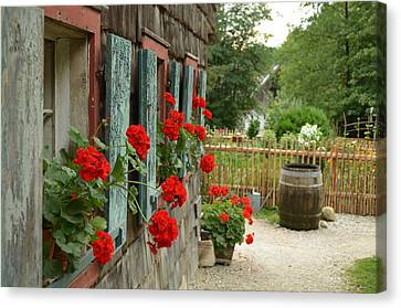 Red Beauties Canvas Print