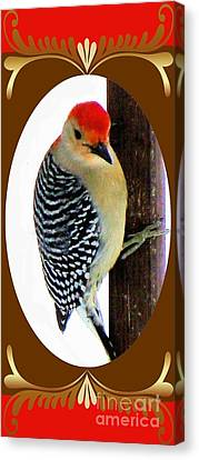 Canvas Print featuring the photograph Red-bellied Woodpecker Framed by Janette Boyd