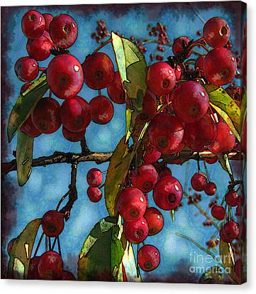 Red Berries Canvas Print by Colleen Kammerer
