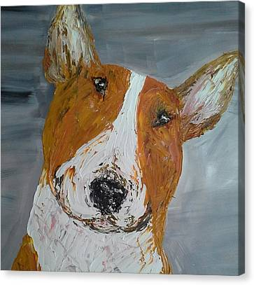 Red Bullie Canvas Print by Janette Ireland