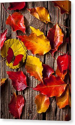 Red Butterfly In Autumn Leaves Canvas Print by Garry Gay