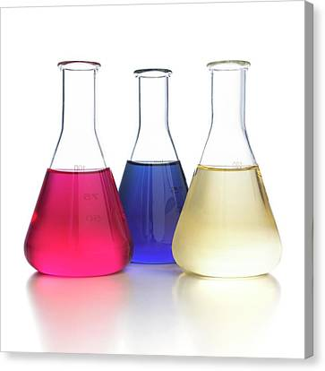 Red Cabbage Ph Indicator Canvas Print by Science Photo Library