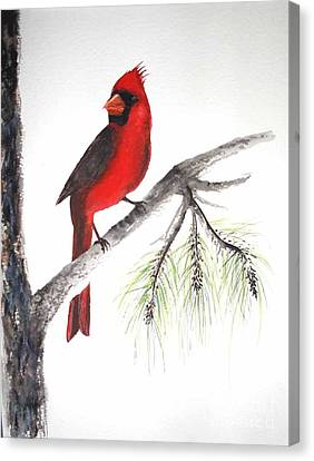 Canvas Print featuring the painting Red Cardinal by Sibby S