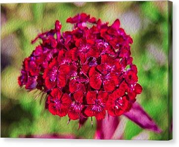 Red Carnations Canvas Print by Omaste Witkowski