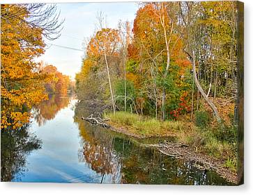 Canvas Print featuring the photograph Red Cedar Fall Colors by Lars Lentz