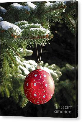 Pine Needles Canvas Print - Red Christmas Ball On Fir Tree by Elena Elisseeva