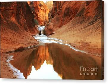 Red Cliffs Symphony Canvas Print