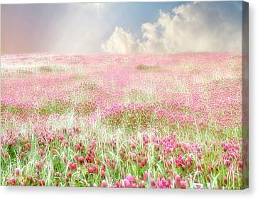 A Perfect World Canvas Print by Amy Tyler