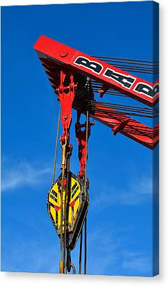 Red Crane - Photography By William Patrick And Sharon Cummings Canvas Print