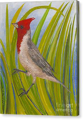Canvas Print featuring the painting Red-crested Cardinal by Anna Skaradzinska