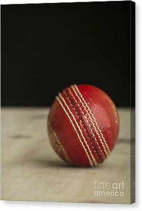 Red Cricket Ball Canvas Print by Edward Fielding