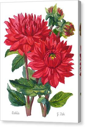 Red Dahlias Canvas Print