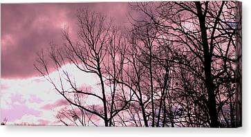 Canvas Print featuring the photograph Red Dawn by Candice Trimble