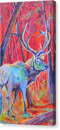 Red Dawn Canvas Print by Jenn Cunningham