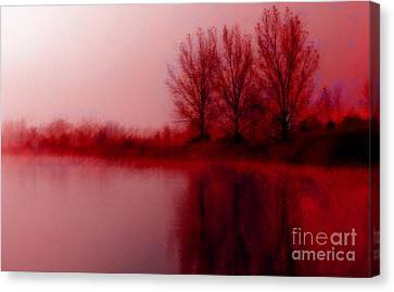 Canvas Print featuring the photograph Red Dawn by Julie Lueders
