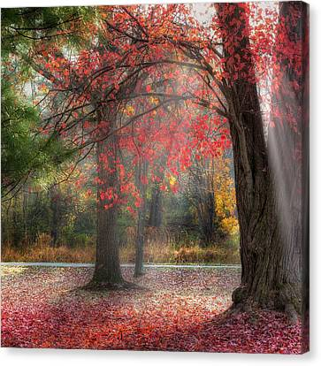 New England Autumn Canvas Print - Red Dawn Square by Bill Wakeley