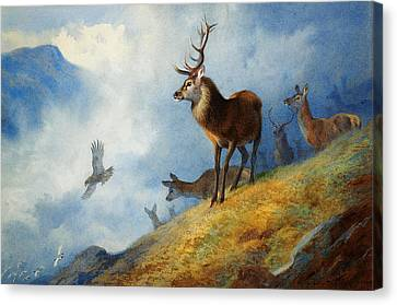 Newy Ork Canvas Print - Red Deer Watching A Golden Eagle Hunt by Archibald Thorburn
