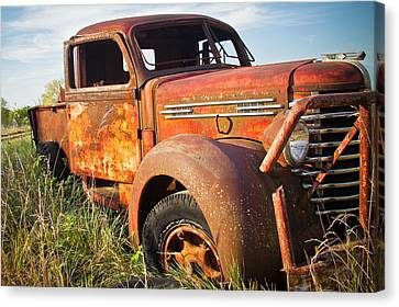 Canvas Print featuring the photograph Red Diamond by Steven Bateson