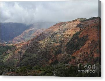 Red Dirt Canvas Print by Butch Phillips