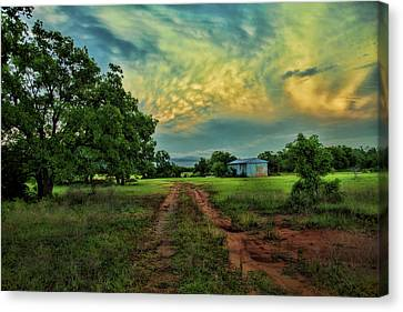 Red Dirt Road Canvas Print by Toni Hopper