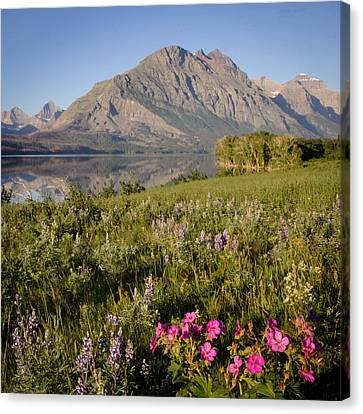 Canvas Print featuring the photograph Red Eagle Mountain by Jack Bell