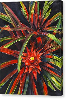 Bromeliad Canvas Print - Red Explosion by Lourdan Kimbrell