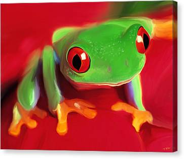 Red Eye Tree Frog Canvas Print by Paul Tagliamonte