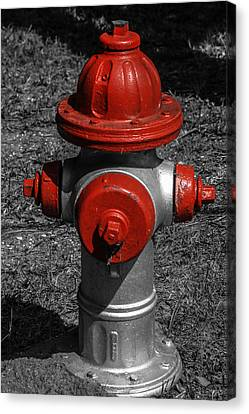 Red Fire Hydrant Canvas Print by Steven  Taylor