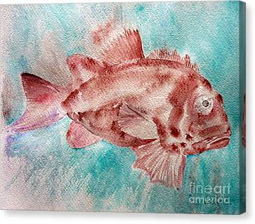 Red Fish Canvas Print by Jasna Dragun