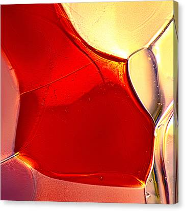 Red Fish Canvas Print by Omaste Witkowski