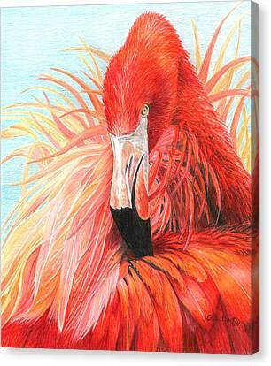 Red Flamingo Canvas Print