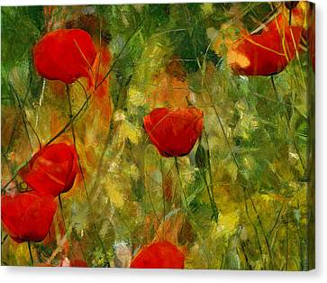 Red Flower Field Canvas Print